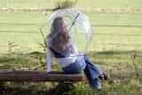 Hochwertiger durchsichtiger Glockenschirm - transparent...