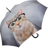 Doppler Stockschirm Modern Art - Crazy Cat